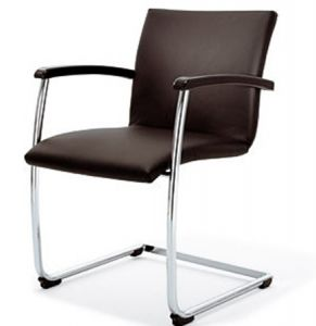 02691 Visitor chair Bene Bug